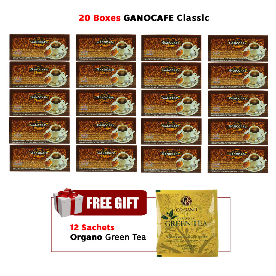 20 boxes Gano Cafe Classic 12 sachets Organo Gold Green Tea