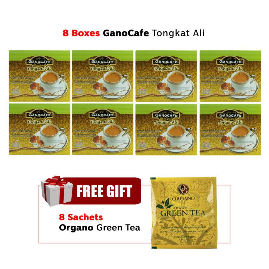 8 boxes GanoCafe Tongkat Ali Free 8x Green Tea sachets